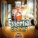 essential-cleaning