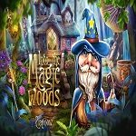 into-the-magic-woods