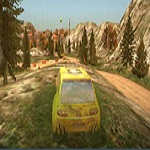 dirt-rally-driver