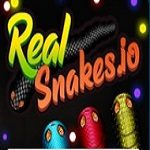real-snakes-io